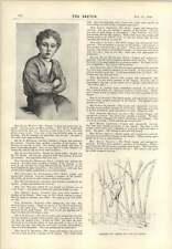 1893 Children's Sketches Miss Olave Wynne Nellie Seaman Winnie Brevis Grace Jack