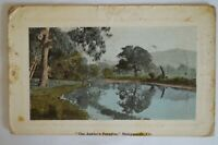 The Angler's Paradise Molesworth Vic. Antiquarian Vintage Collectable Postcard.