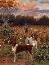 GERMAN SHORTHAIRED POINTER DOG GREETINGS NOTE CARD MEN WITH GUNS & DOGS