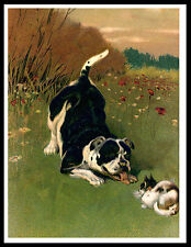 STAFFORDSHIRE BULL TERRIER AND CAT LOVELY VINTAGE STYLE DOG PRINT POSTER