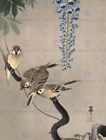 JAPAN NATURE SPARROW BIRD FLOWER Shoson Ohara POSTER ART PRINT BB52B