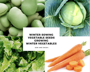 Vegetable Seeds : Winter Collection: Seed to Table in 6 weeks