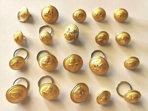 Lot 20 Buttons Militaire. (AD1247)