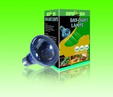 LAMPADA DAYLIGHT PER RETTILI TARTARUGHE 75W - REPTIZOO B63075