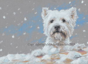 West Highland Terrier Dog, Christmas cards pack of 10 by Paul Doyle. C584X