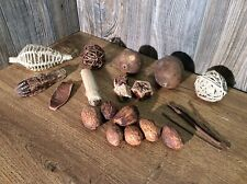 Lot Of Dried Forest And Garden Items For Centerpiece Or Crafts E9