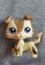 Hasbro Littlest Pet Shop 2210 Brown Cream Collie Puppy Dog Blue Eye Loose LPS