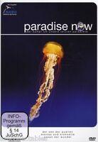 DVD - PARADISE NOW - LA LUCHA ALREDEDOR NUESTRO LETZTEN PARADISE - PARTE 3