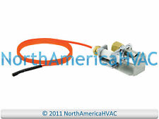 OEM Rheem Ruud Richmond Water Heater Ignitor Pilot Sensor Assembly SP12560B