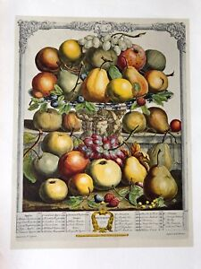 Robert Furber Twelve Months of Fruits: December Etching Print, 1970, Penn Prints