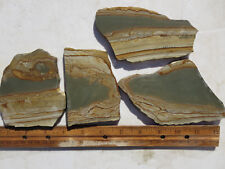 782  PICTURE JASPER SLABS GREAT FOR CABS OR ROCK PAINTINGS. FROM OLD ROCK SHOP