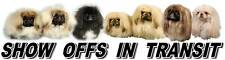 Pekingese Show Off  Car Sticker By Starprint