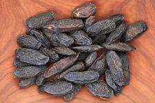 100g Tonka Bohnen aus Brasilien A-Ware