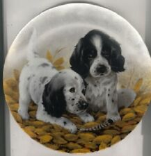 English Setter Limited Edition Plate: Fine Feathered Friends Last One!