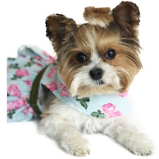 China Doll Rose Dog Dress Blue or Pink  with Matching Leash