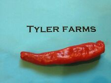 10+ Charleston Hot Pepper Seeds- Organic chili, chile, great in salsa, hot sauce