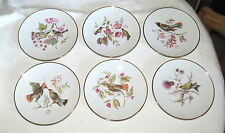 """Bavaria Germany DEBRA Six 7.3/4"""" Plates with Birds"""