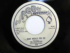 SILHOUETTES 45 sold my heart to the junkman /What would you do ACE Doowop e1818