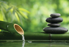 Spa Still Life With Bamboo Fountain And Zen Stone Poster Print, 19x13