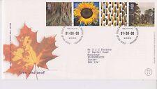 GB Royal mail FDC PRIMO GIORNO DI COPERTURA 2000 Albero & Foglia Stamp Set Bureau PMK