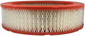 Air Filter Defense CA176