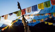 Tibetan Buddhist Prayer Flags - Wind Horse 12.5cm x 12.5cm (5 flags)-1.2M Length