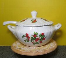 20 cup Soup Tureen with Ladle Strawberry decals