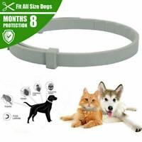 Flea and Tick Collar Dog Cat 8 Month Protection Adjustable Small Medium Large UK
