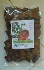200g Catappa indian almond leaves ketapang leaf shrimp betta fish aquarium care
