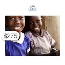 $275 Charitable Donation HEIFER INTERNATIONAL: Send a Girl to School