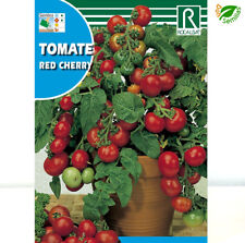 Tomate Cerise Red Cherry ( 1 gr / 350 semillas aprox ) seeds - Cereza Rojo