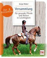 Versammlung für gesunde Pferde und Reiten in Leichtigkeit Ratgeber Buch Tipps