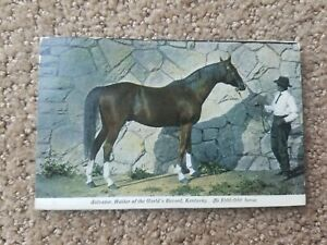 1913 Eighty Eight Kentucky Postmark Postcard Postal History
