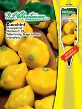 Calabacines 'Sunburst' f1-cilindrica pepo, no rankend, aproximadamente 8 semillas, 40394