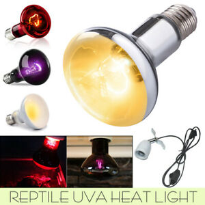 Reptile Heat Light Bulb Day Night Amphibian Bird Snake Lamp Infrared Basking UVA