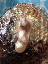 Rare Freeform South Sea Baroque Pearl Cabochon Number 5