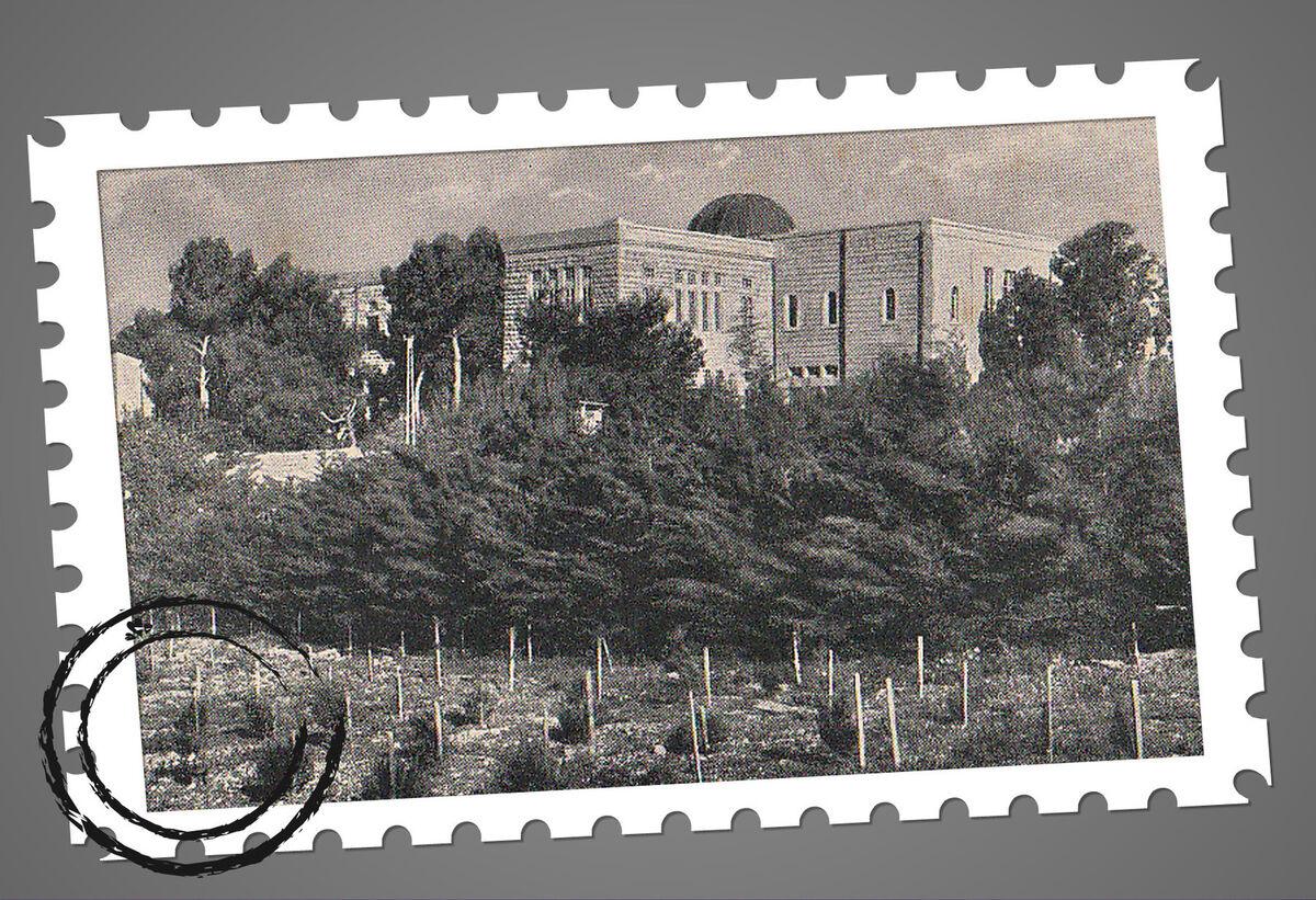 Ettlinger Collectors House