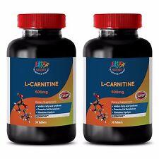 Extra Strength Formula TaBs - L-Carnitine 500mg - Acetyl L Carnitine Powder 2B