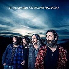 CHRIS ROBINSON BROTHERHOOD CD - IF YOU LIVED HERE, YOU WOULD BE HOME BY NOW -NEW