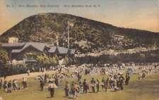 Bear Mountain Park New York Playfield Birdseye View Antique Postcard K78501
