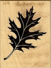 PSX Rubber Stamp F-1143,  Oak Leaf. Background fall.  S12