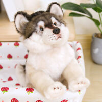 Realistic Gray Wolf Pup Plush Toy Stuffed Animal Soft Pet Doll Cute Kid Gift NEW