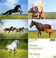 """""""PFERDE-POSTKARTEN"""": Postkarten-Set (50 St.) - ideal für Postcrossing"""