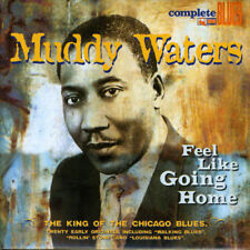 CD musicali per Blues muddy waters