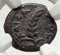 COPONIUS Prefect of Roman JERUSALEM under Augustus 6AD BIBLICAL Coin NGC i70861