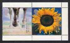 GB 2000 sg2153a Horse Trans Pennine Trail & Sunflower Booklet Pane MNH