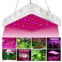 3000W Full Spectrum Hydro LED Grow Light For Medical Plants Veg Bloom Indoor ZH