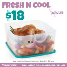 Tupperware Fresh and Cool Square