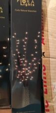 Floral Lights Curly Natural Branches 48""