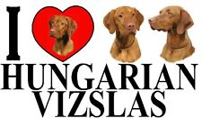 I LOVE HUNGARIAN VIZSLAS Dog Car Sticker By Starprint - Ft. the Hungarian Vizsla